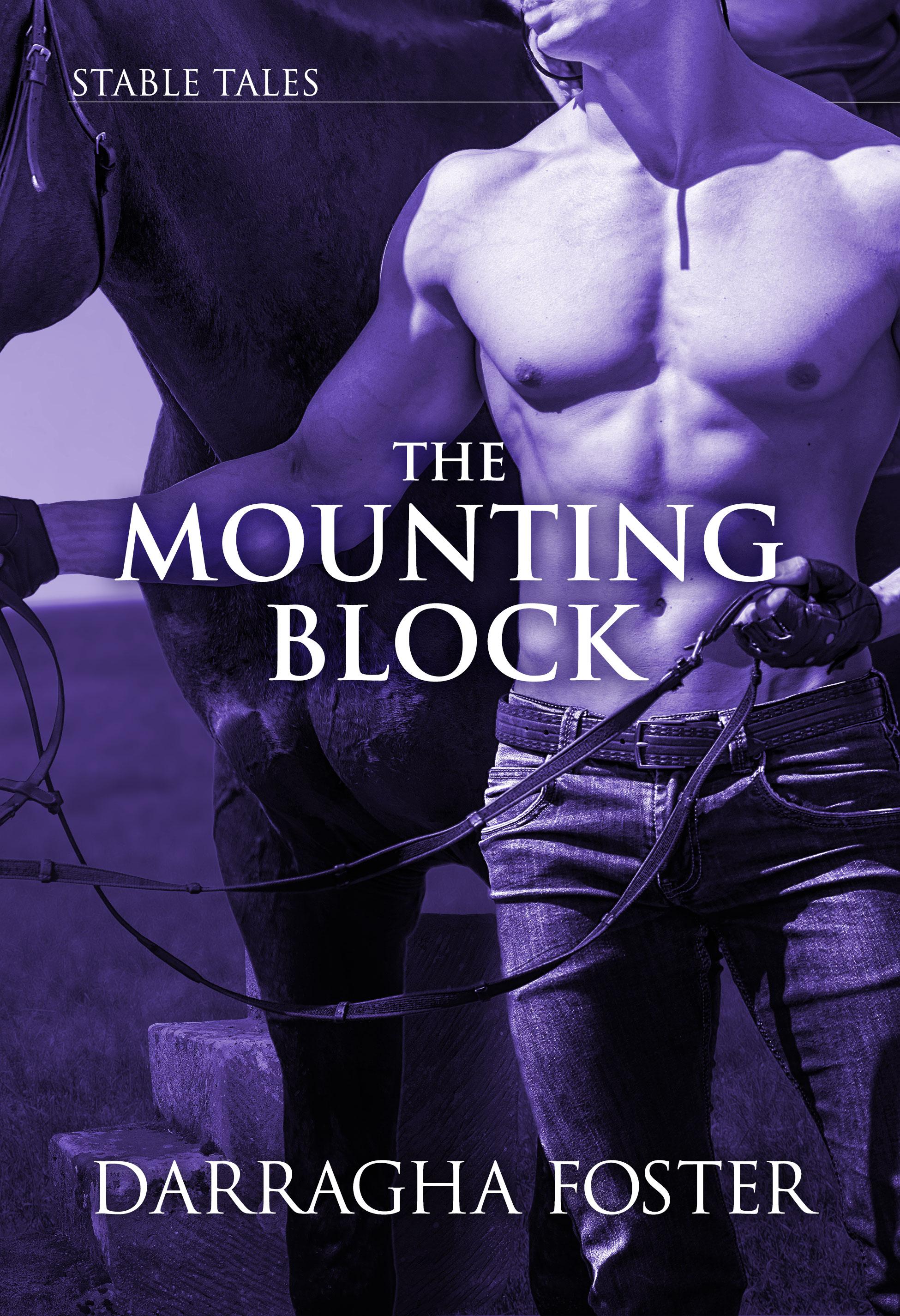 TheMountingBlockCover