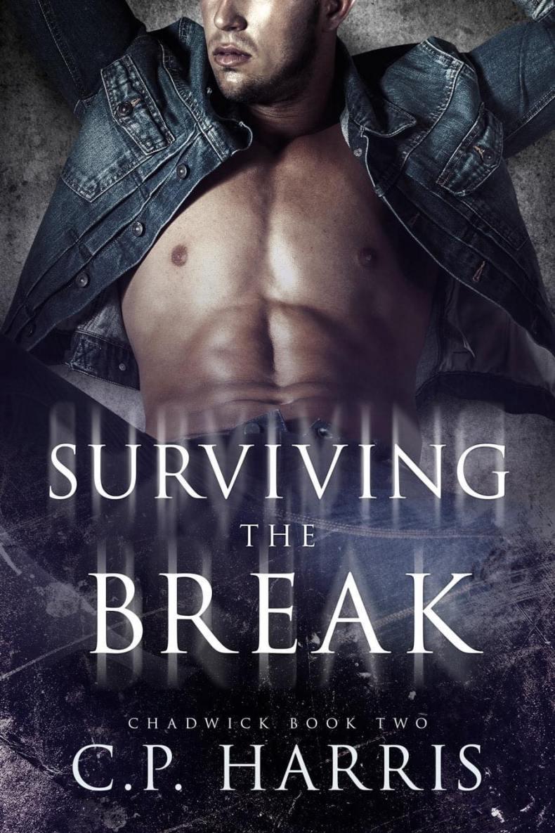 Surviving the Break Book 2