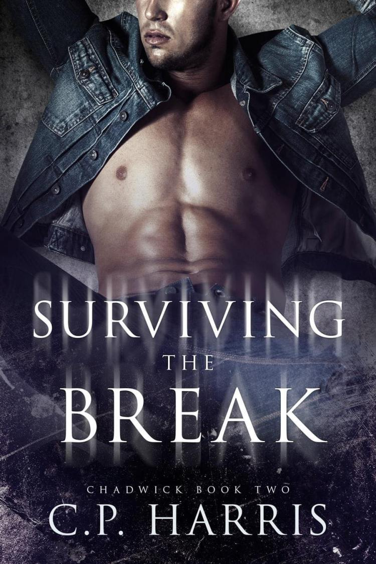Surviving the Break Book 2