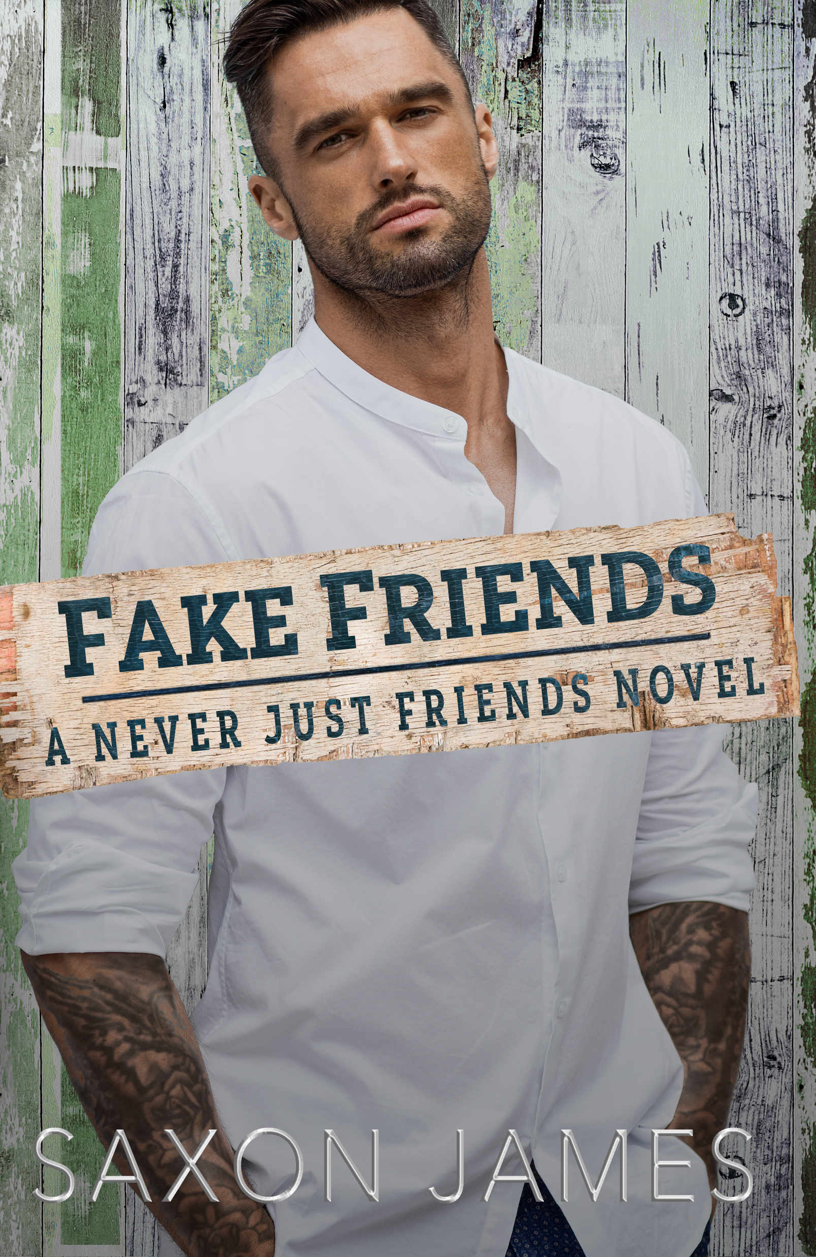 Fake Friends book 2 EBOOK just friends series