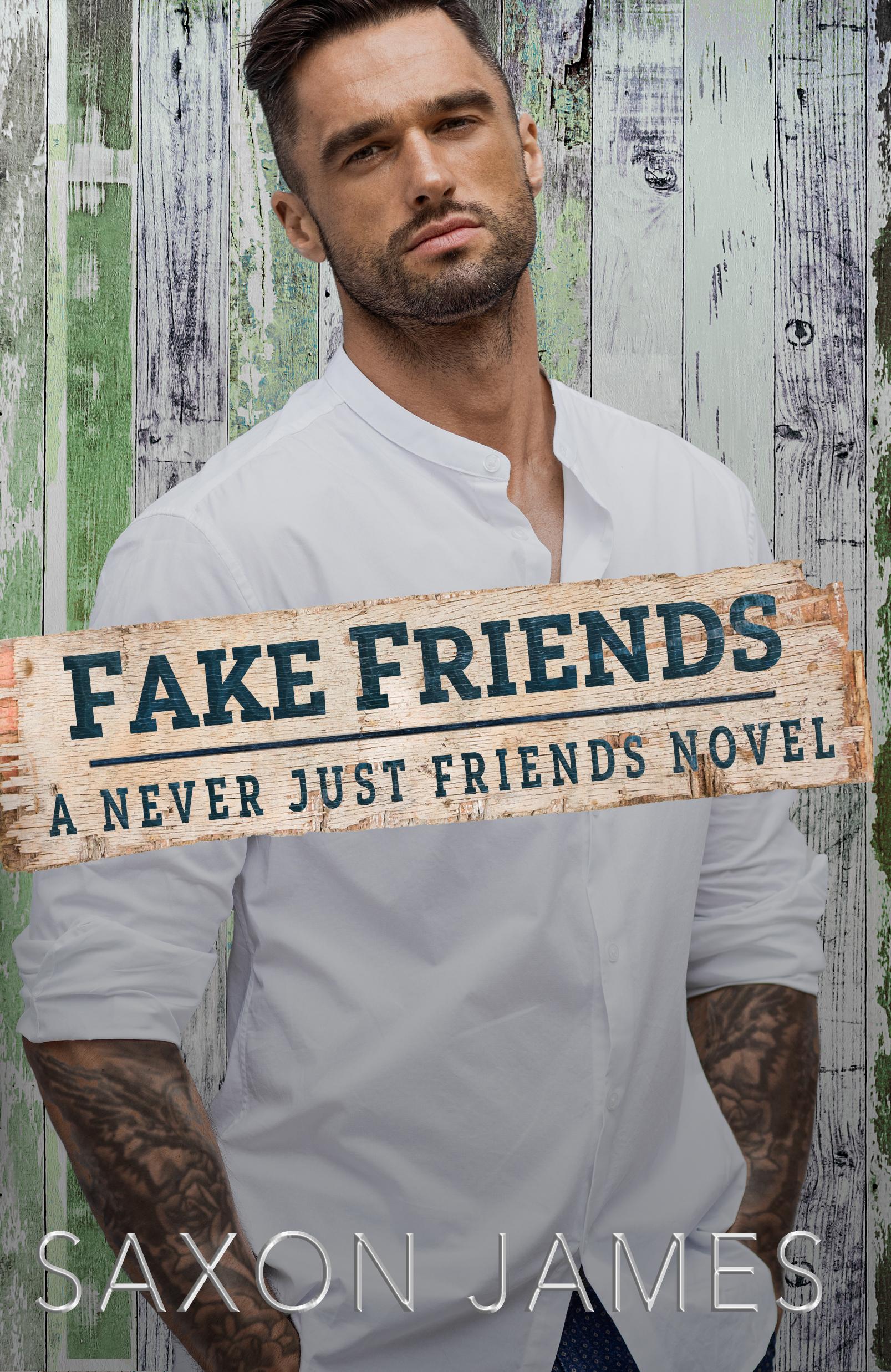 Fake Friends book 2 EBOOK just friends series