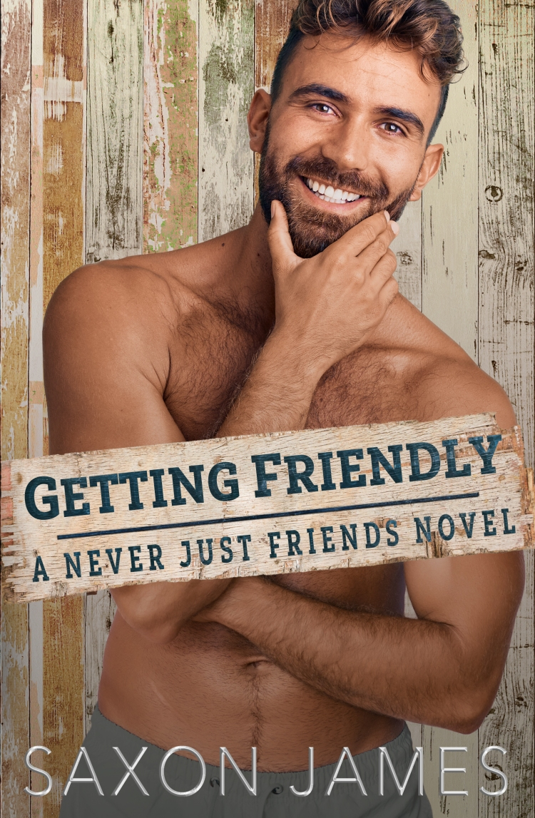 Getting Friendly eBook